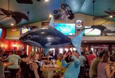 Shark Week Takes Over Flagler Tavern
